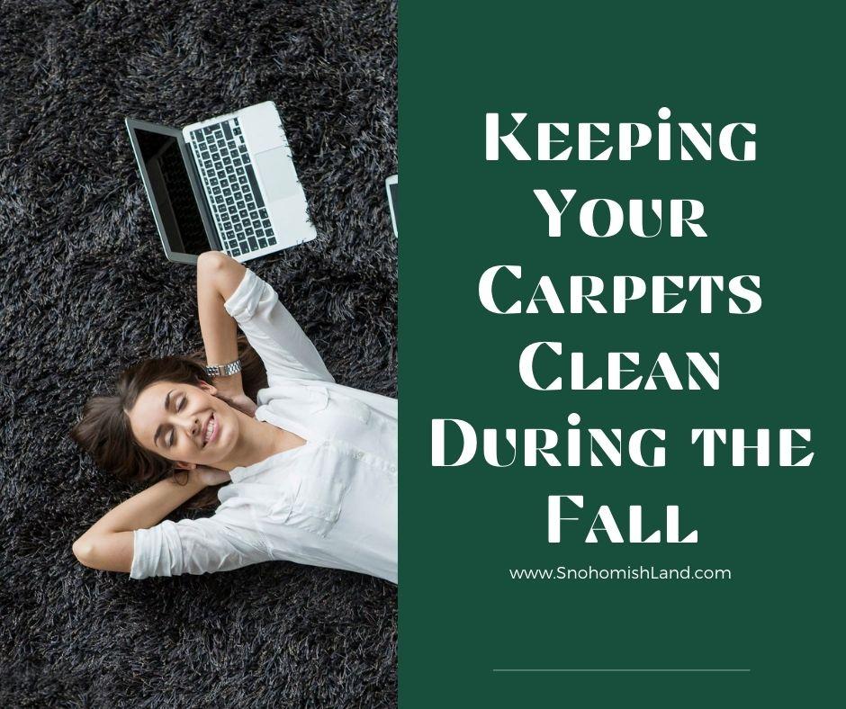 Carpets Clean